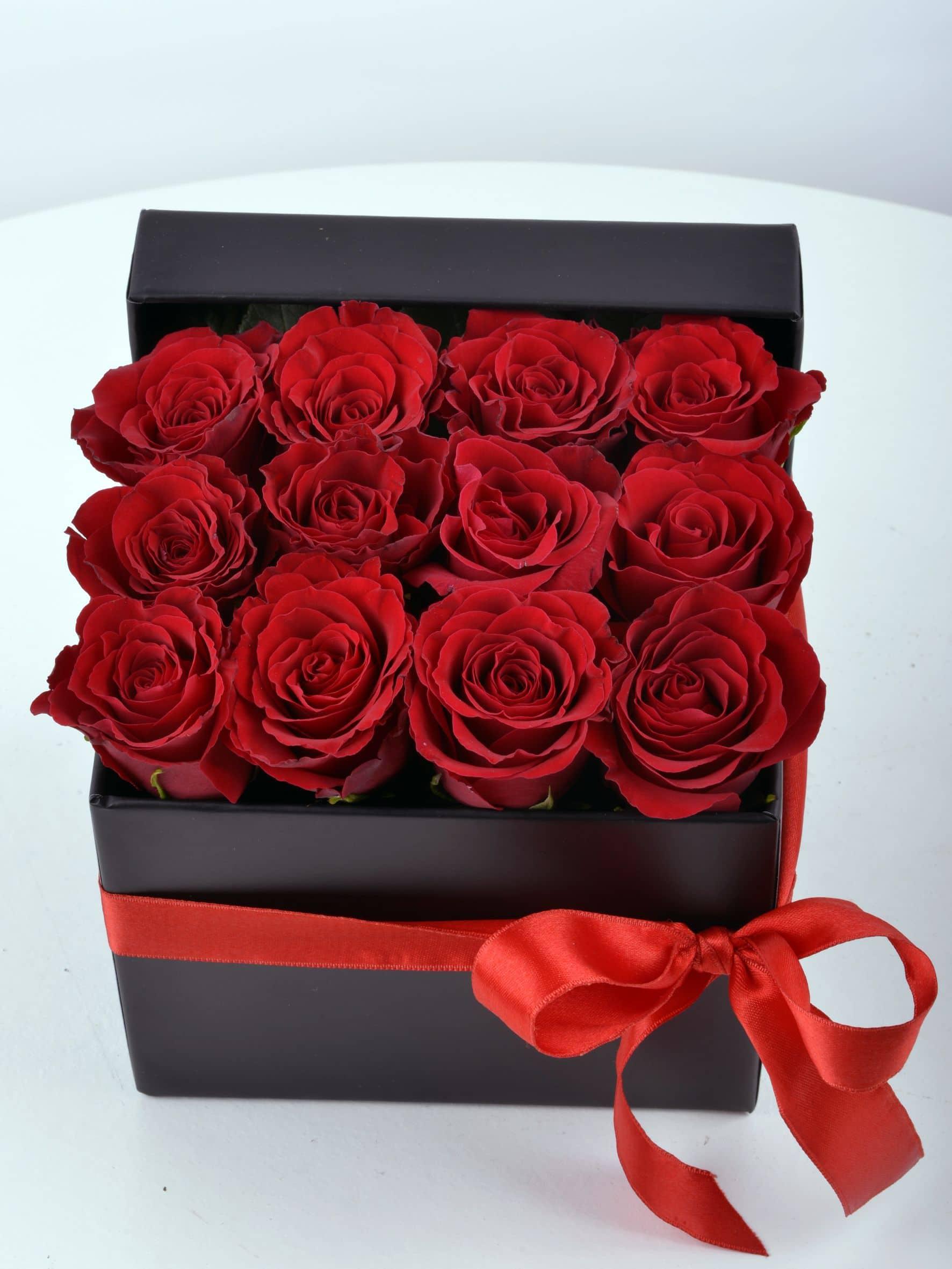 Kutu Kutu Aşk