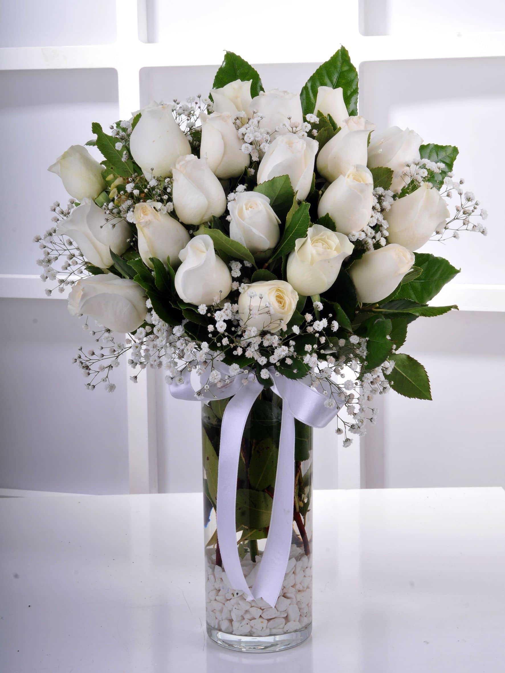 Vazoda Beyaz Güller