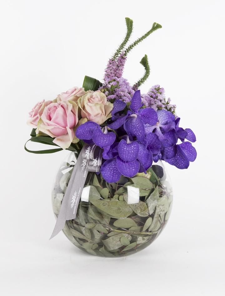 Mor Orkide ve Güller