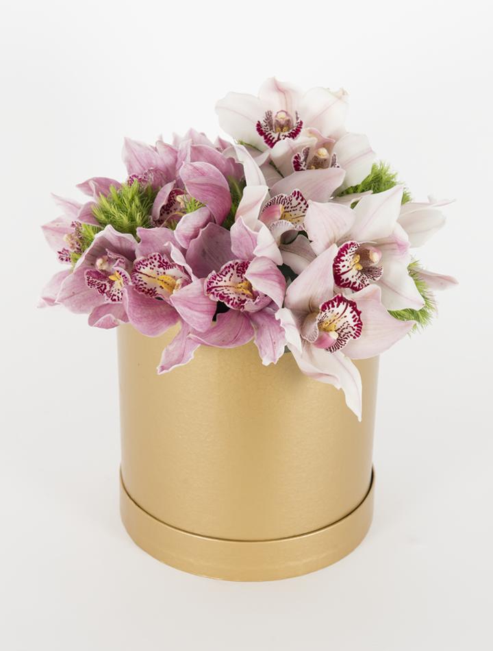 Kutuda Orkideler
